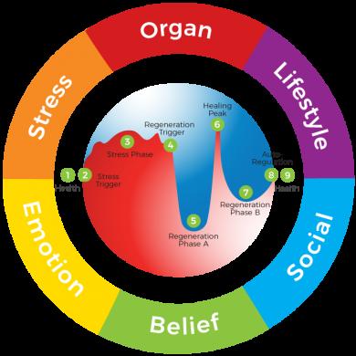 6 Root-Causes of Symptoms